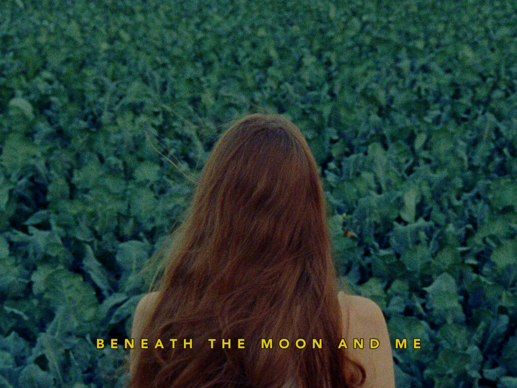 "alt=""beneath the moon and me"""